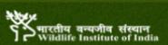 Project Fellow Life Sciences Jobs in Dehradun - WII
