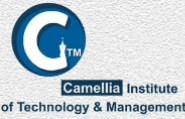 Ground Staff Jobs in Kolkata - Camellia Institute of Aviation