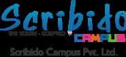 Content Writer Jobs in Pune - Scribido Campus Pvt Ltd