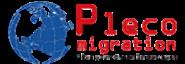 Immigration Consultant Jobs in Delhi - PLECO MIGRATION PRIVATE LIMITED