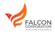 Business Development Executive Jobs in Bangalore - Falcon Corporation