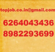 Tally Accountant Jobs in Indore - Topjob
