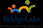 Software Engineer - Developer Jobs in Across India - BridgeLabz