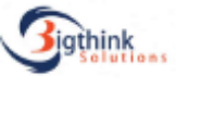 Sales Process Associate Jobs in Noida - BigThink Solutions Private Limited