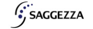 Trainee Software Engineer Jobs in Chennai - Saggezza India Pvt Ltd