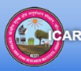 Project Associate Jobs in Jodhpur - CAZRI