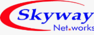 Field Executives Jobs in Hyderabad - Skyway networks