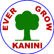 Telecaller Jobs in Coimbatore - Kanini Technology
