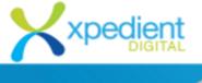 SEO Executive Jobs in Hyderabad - Xpedient digital