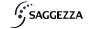 Saggezza India Pvt Ltd.