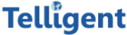 International Customer Support Jobs in Bangalore - Telligent Support LLP