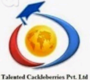Marketing Executive Jobs in Mumbai - TALENTED CACKLEBERRIES PVT. LTD