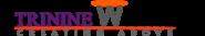 SEO Executive Jobs in Lucknow - Trinine Webtech Pvt.Ltd