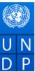 International Consultant Jobs in Across India - UNDP