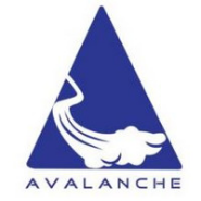 SEO Analyst Jobs in Hyderabad - Avalanche IT Services India Pvt Ltd