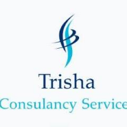 MIS Executive Jobs in Delhi,Ahmedabad,Anand - Trisha Consultancy Services