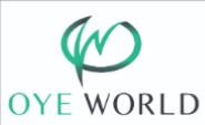 Digital Marketing Trainer Jobs in Pune - Oye World Institute