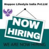 Internet Marketing Jobs in Mumbai,Navi Mumbai,Jaipur - Hoppoo lifestyle india pvt ltd