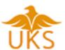 Data Entry Executive Jobs in Tiruppur - UKS consultant Service