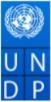 Team Leader Rural Housing Jobs in Delhi - UNDP