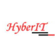 Sales Executive Jobs in Delhi,Faridabad,Gurgaon - Hyber IT Services Pvt Ltd