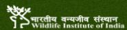 Subject Matter Specialist Jobs in Dehradun - WII