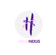 Business Development Executive Jobs in Mumbai,Navi Mumbai - Halo Nexus