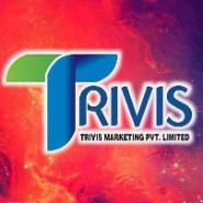 Back Office/Data Entry Jobs in Bathinda - Trivis