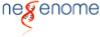 Digital Marketing Analyst Jobs in Guwahati - NEGenome