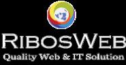 Public Relationship Officer Jobs in Kolkata - Ribosweb outsourcing pvt ltd