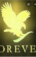 Marketing/Sales Executive Jobs in Patna - Forever Living products