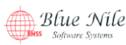 IT Software Developer Jobs in Outside India - Blue Nile software systems private limited
