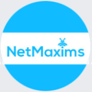Bussiness Analyst Jobs in Faridabad - Netmaxims Technologies Pvt. Ltd
