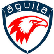 Junior IT Recruiters Jobs in Anantapur,Guntur,Kadapa - Aguila consulting