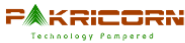 Recruitment Executive Jobs in Hyderabad - Pakricorn Techno