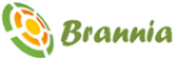Digital Marketing Interns Jobs in Noida - Brannia