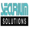 Business Development Executive Jobs in Delhi,Faridabad,Gurgaon - Securium Solutions Pvt Ltd