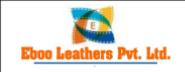 Sales/Marketing Executive Jobs in Bharatpur,Agra,Mathura - Eboo Leathers Pvt Ltd