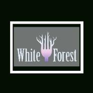 Waiter / Waitress Jobs in Mumbai - WHITE FOREST NIGHTCLUB