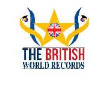 Social Media Optimization Specialist Jobs in Bangalore,Chennai,Hyderabad - British World Records