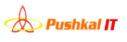 Business Development Executive Jobs in Indore - Pushkal IT Solution