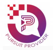 Backend support Jobs in Delhi,Noida - Pursuit Provider