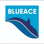 marketing advisor Jobs in Gurgaon,Noida,Delhi - Blueace Limited