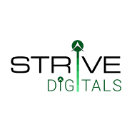 Junior SEO Analyst Jobs in Ahmedabad - Strive Digitals