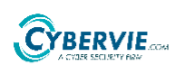 Marketing Sales Executive Jobs in Bangalore,Mumbai,Hyderabad - CybervieIonots Technologies Pvt Ltd