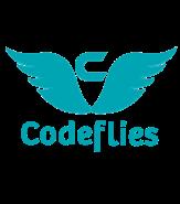 Project Manager Jobs in Noida - Codeflies