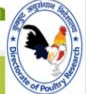 SRF Biotechnology Jobs in Hyderabad - Directorate of Poultry Research