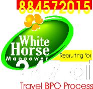 Customer Care Executive Jobs in Bangalore - White Horse Manpower Consultancy P Ltd.