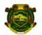 JRF Basic Sciences Jobs in Ranchi - Central University of Jharkhand