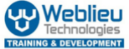 Computer Teacher Jobs in Delhi,Faridabad,Gurgaon - Weblieu Technologies
